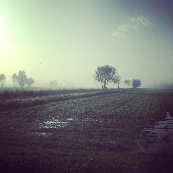 Paesaggi dal finestrino della macchina © Zaira_Zarotti_2