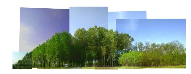 AtelierTransito © 2013_11 scatti per un paesaggio_42